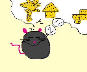 Mouse dreams of a world made of cheese.