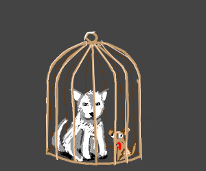 A cage in which to keep the dogs.