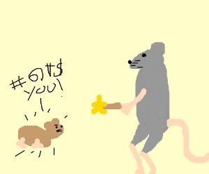 rat shrinks cư̝̣̯̥̥̮̬̲̑͊͂̐rsing hamster