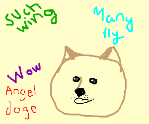Angel doge. Such wing. Many fly. Wow.