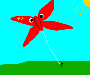 Chinese Communist Butterfly Kite