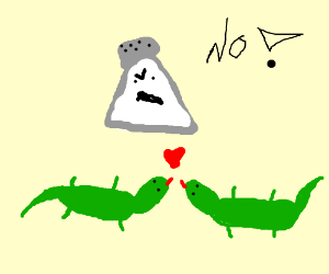 Saltshaker interrupts reptilian love