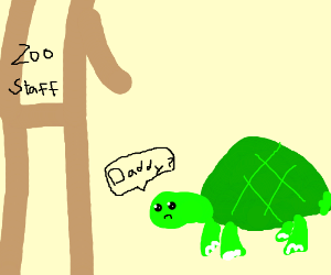 Turtle thinks distracted zookeeper is its dad