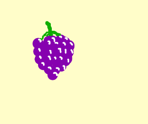 A bunch of purple grapes