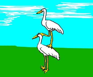 Crane standing atop a crane.