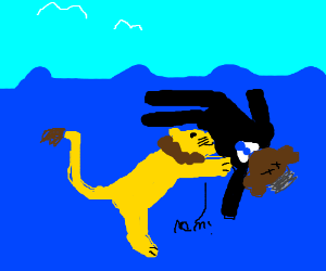 lion in water is eating obama