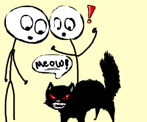 Angry cat MEOWS. People are intrigued