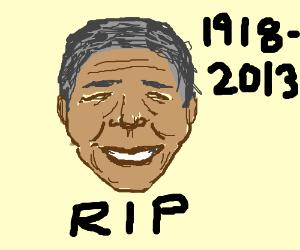 Nelson Mandela rips South African flag