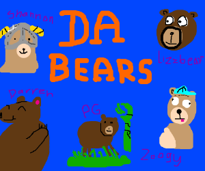 Da Bears: vet style