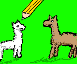 how to draw a simple llama