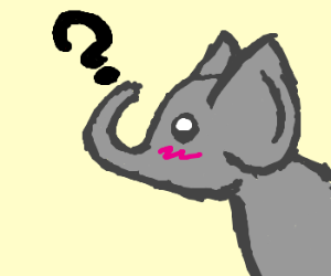 Clueless elephant