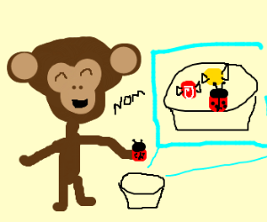 Jojo the monkey eats beetles like candy