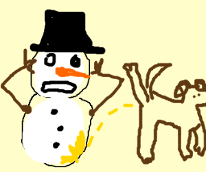 Frosty gets a yellow surprise from a dog