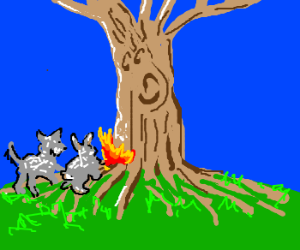 elderly wolf and rabbit set a tree on fire