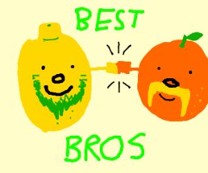 Bearded lemon makes a friend