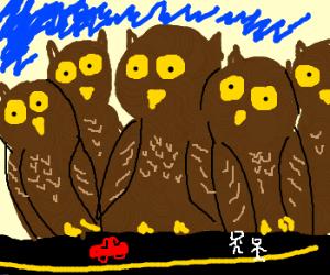Owl City (literally)