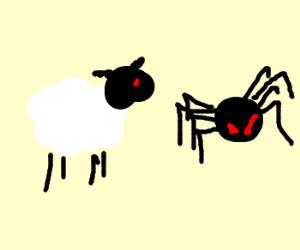 Sheep Vs Spider. Finish Him!!!