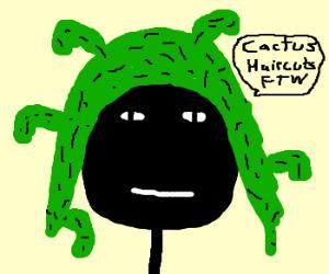 Cactus haircut