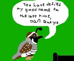 Quail (bird) gets his revenge