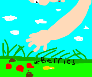 Don't eat 'berries' off the ground
