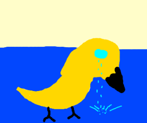 Forever alone duck
