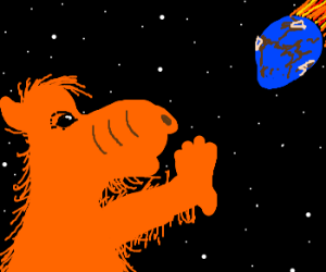 Alf doesnt want his home planet to smash Earth