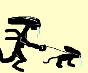 Xenomorph walks its pet dog