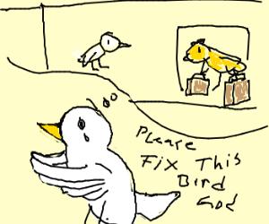 Bird of Prayer is having a bad day