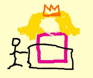 finn the human covering box princess