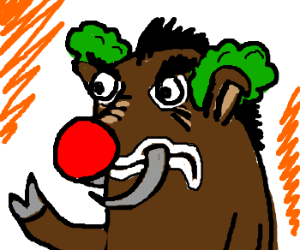 boar-is the clown