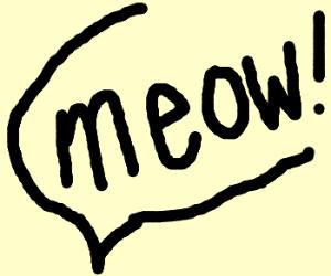 Cat meow!