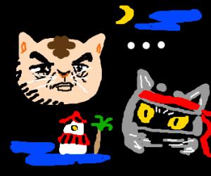 Kitties say . . .