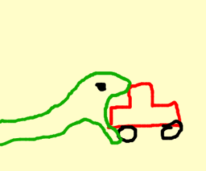 Car accident involving snakes