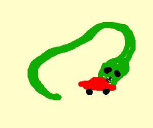 green snake swallows a read car