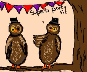 A Superb owl party