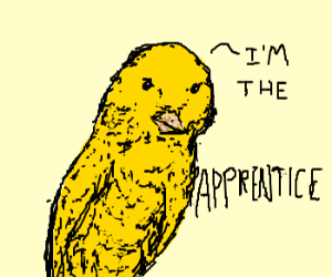The Apprentice - Canary Edition