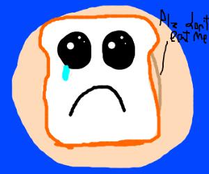 sandwich being cute to escape its tragic fate
