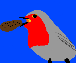 Robin eats a tasty cookie.