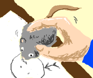 You received: Mouse! Use it for drawing!
