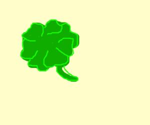 Seven leaf clover