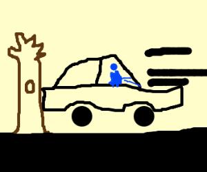 A fish backs a car into a tree