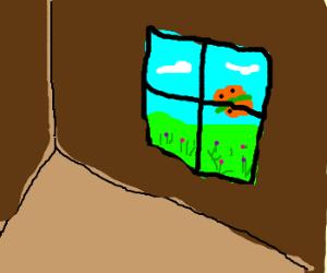 A butterfly outside a window