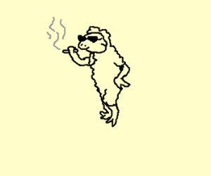 Gangsta sheep.