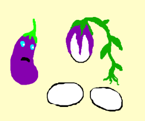 Eggplant is actually an egg-plant