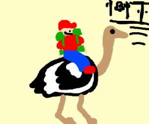 Kid riding ostrich to school