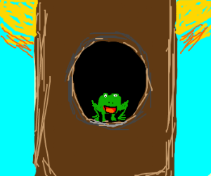 A frog living in a tree stump.