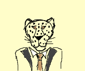 Leopard CEO.