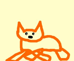 Fox crossing legs while sitting.