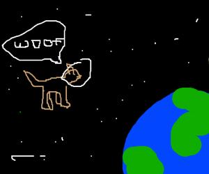 Communist dog in space