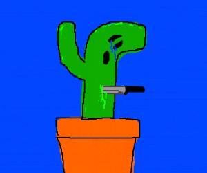 sad cactus is bleeding